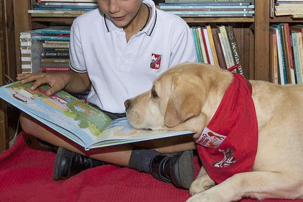 PET THERAPY: LA LETTURA ASSISTITA